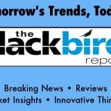 The Blackbird Blog